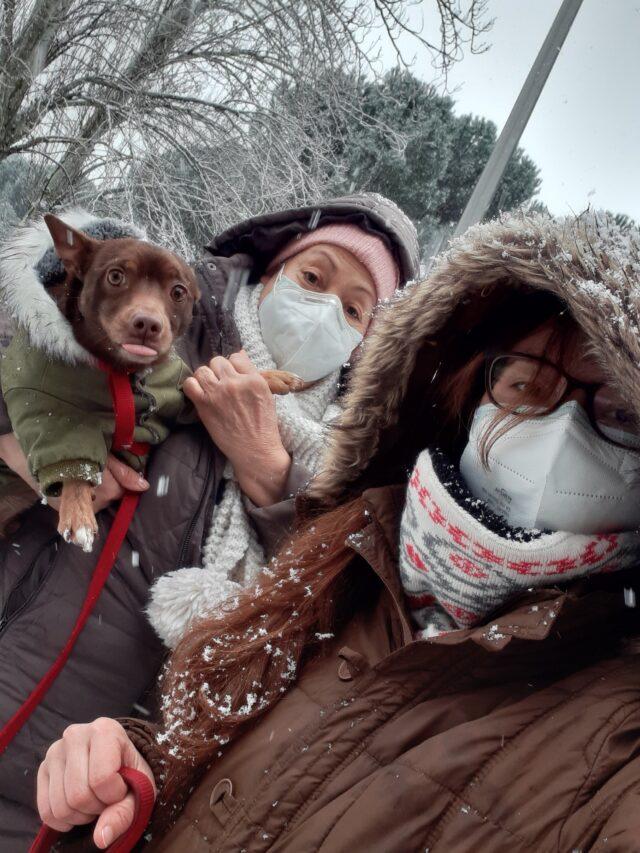 familia en la nieve en madrid con su mascota